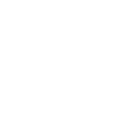 I have no design; I make opportunity my design.